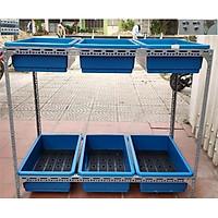 Kệ sắt trồng rau thông minh 2 tầng, 6 khay trồng rau kích cỡ 67x43x15 cm