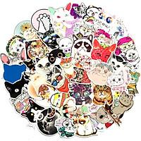 Sticker 50 miếng hình dán Cat collection - hàng nhập khẩu