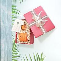 Combo hộp quà tặng đẹp size 23x17x7cm tặng thiệp + giấy rơm lót + túi quà - HQ02