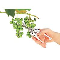 Kìm cắt tỉa chuyên nghiệp cho cây ăn trái Tramontina