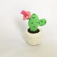 Chậu xương rồng mini móc len - Quà tặng handmade (phát mẫu ngẫu nhiên)