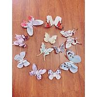Set 12 bướm 3D đủ kích thước đế nam châm trang trí
