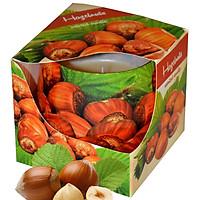 Ly nến thơm tinh dầu Admit Hazelnuts 100g QT04534 - hương hạt phỉ