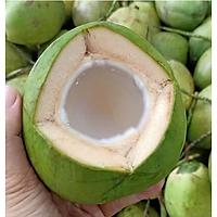 [Chỉ giao HN] Dừa - 1 quả