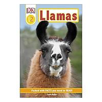Llamas - DK Readers Level 2 (Hardback)