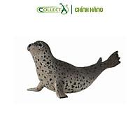 Mô hình thu nhỏ: Hải Cẩu Đốm - Spotted Seal, hiệu: CollectA, mã HS 9652130[88658] -  Chất liệu an toàn cho trẻ - Hàng chính hãng