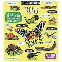 LITTLE EXPLORERS BUGS