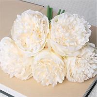 Hoa mẫu đơn 5 bông màu kem 1021K    FLOWER
