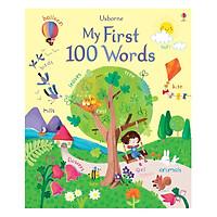Usborne First 100 words