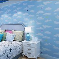 10M Giấy dán tường Bầu trời trong xanh  WP0083