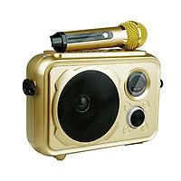 Loa Bluetooth Mini Karaoke Âm Thanh Cực Hay Có Mic PKCB38 Gold - Hàng Chính Hãng