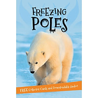 It'S All About... Freezing Poles