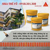 Chống thấm không cần đục gạch, chống thấm lộ thiên - Sikalastic 590 (thùng 20kg)