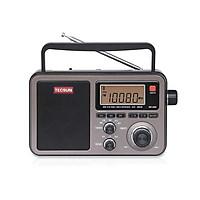 Radio Tecsun RP-309 (Hàng nhập khẩu)