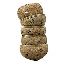 Bộ 5 gáo dừa trồng lan viền miệng, khắc hoa văn đẹp