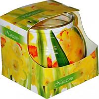 Ly nến thơm Admit ADM0671 Narcissus 80g (Hương hoa thủy tiên vàng)