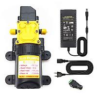 Bơm nước mini áp lực 12V 48W XLD 4.9L tự động kèm nguồn