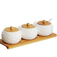 Bộ đựng gia vị nhà bếp khay gỗ 3 hũ tròn đứng