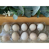 [Chỉ giao HCM] Trứng gà ta 10 quả