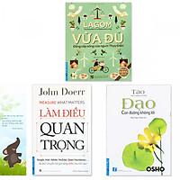 Combo 3 quyển: Lagom - Vừa Đủ - Đẳng Cấp Sống Của Người Thụy Điển + Làm Điều Quan Trọng  + Đạo - Con Đường Không Lối (Tặng kèm bookmark danh ngôn hình voi)