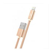 Cáp sạc Lightning Hoco X2 cho iPhone/ipad  2m (Vàng đồng) - Hàng Chính Hãng