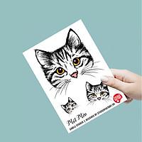 Mặt Mèo - Single Sticker hình dán lẻ
