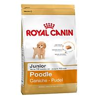 Thức Ăn Cho Chó Royal Canin Poodle Junior (1.5kg)