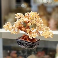 Cây thạch anh vàng nhỏ dáng truyền thống KC108