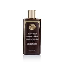 Black Mud Shampoo 250ml - Dầu gội bùn đen Kedma