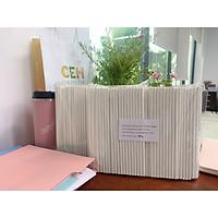 0,5 kg ống hút giấy Clean Paper Straw kích thước 6mm x 197mm màu trắng dùng cho cà phê, nước ép, nước dừa..... ( ~435 ống)