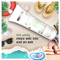 PLANT EXTRACT - Kem xả tóc   Alphatra Classic   160ml