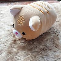 Mèo kim tiền nhồi bông size 30cm màu vàng cát