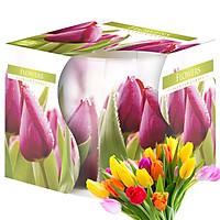 Ly nến thơm tinh dầu Bispol Flowers 100g QT024786 - hương hoa tulips