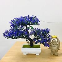 Chậu hoa bonsai nhựa 3 nhánh nhiều màu sắc trang trí bắt mắt