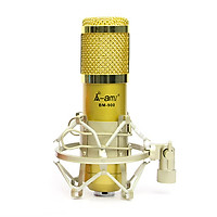 Mic thu âm BM900 Ami