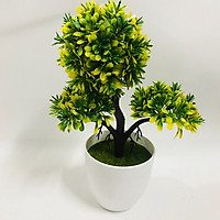 Chậu Bonsai nhựa 3 nhánh dáng đứng các màu