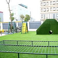Thảm CỎ NHÂN TẠO: Nhập khẩu chính hãng, chất lượng cao, an toàn cho người dùng - Phù hợp trang trí cảnh quan, sân chơi, nội & ngoại thất. Nhiều lựa chọn:
