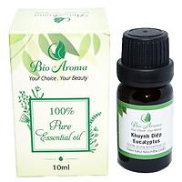 Tinh dầu khuynh diệp (Bạch đàn) - Eucalyptus 10ml | Bio Aroma