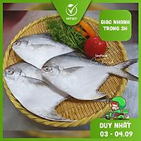 [CHỈ GIAO HN] - VITOT FOOD CÁ CHIM ÉN TƯƠI (500g/ khay)