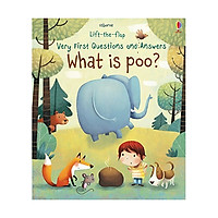 Lift-The-Flap Very First Questions & Answers : What is Poo?
