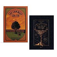 Combo 2 cuốn văn học cảm xúc và cuốn hút: Cây Cam Ngọt Của Tôi + Hoa Vẫn Nở Mỗi Ngày