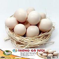 Trứng gà tươi sạch, an toàn, giá rẻ, giao hàng nhanh ( 1 vỉ/10 quả)