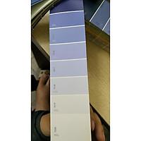 Sơn ngoại thất TOA Supertech 5 Lit - Thoải mái chọn màu sắc