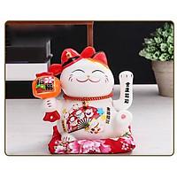 Mèo Thần Tài Vẫy Tay Nhật Bản nhiều mẫu