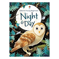 Usborne Young Beginners Night & Day