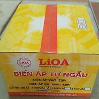 Bộ đổi nguồn 220v sang 100v - 120v lioa 1000va