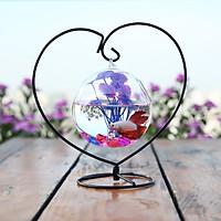 Bể cá mini trái tim 21