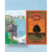 Combo sách CÂY CAM NGỌT CỦA TÔI + BITNA DƯỚI BẦU TRỜI SEOUL (tặng kèm bookmark)