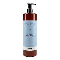 Dầu Gội dưỡng ẩm, phục hồi, Giữ Màu Artego Rain Dance Color Shampoo 1000ml