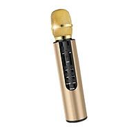 Micro không dây bluetooth kèm loa hát karaoke có khay cắm thẻ nhớ âm thanh vượt trội PKCB PF1019 - Hàng chính hãng